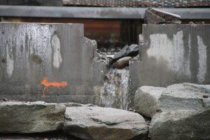 Hovinbekken og sothøner 002