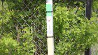 Hva er stolpejakten tenker du? Eller kanskje har du sett flere av stolpene/pinnene som er satt ut langs gangveier og turstier, som er grønne på toppen med et nummer/kode […]