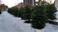 Den brune campingvogna er satt opp utenfor Hasle senter i Grenseveien. Folk som skal ha juletrær kan puste lettet ut når den kommer på plass, da vet de at det […]
