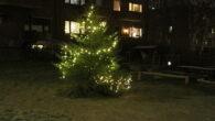 Selv i en korona situasjon, så ble julegranene tent på Ensjø og i nabolaget. Det var mindre arrangement og aktivitet rundt teningene i år. Det har helt sikkert blitt tent […]