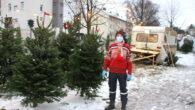 Den brune campingvogna er satt opp utenfor Hasle Torg i Grenseveien. Folk som skal ha juletrær kan igjen puste lettet ut, når den kommer på plass, da vet de at […]