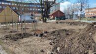 Denne uken og neste uke er anleggsgartnere i ferd med å legge siste hånd på den nyetablerte Grønvoll park. Det som tidligere var en grå parkeringsplass foran et næringsbygg, er […]