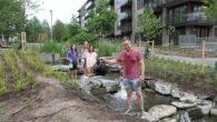 På søndag kl 1200 til 1300 så deltok 12-15 voksne og barn på vannkannetreff i Tiedemannsparken. Målet var å vanne de nye plantene i den nyåpnede delen av Tiedemannsparken. […]