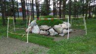 I mai skrev Ensjø aktuell informasjon om at arbeidene med salamandergjerdet var startet opp. Nå er arbeidet avsluttet, og området er planert og det er sådd gress på kantene. Det […]